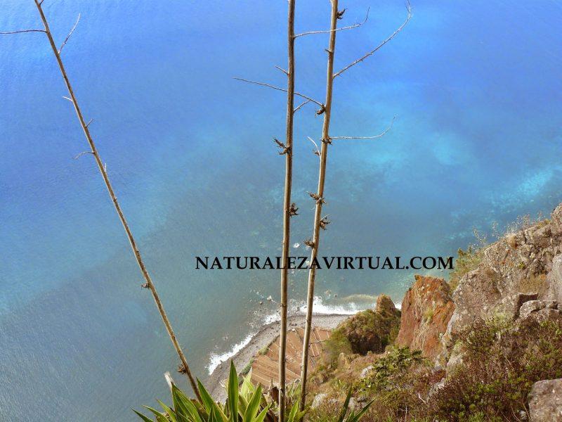 El Cabo Girao